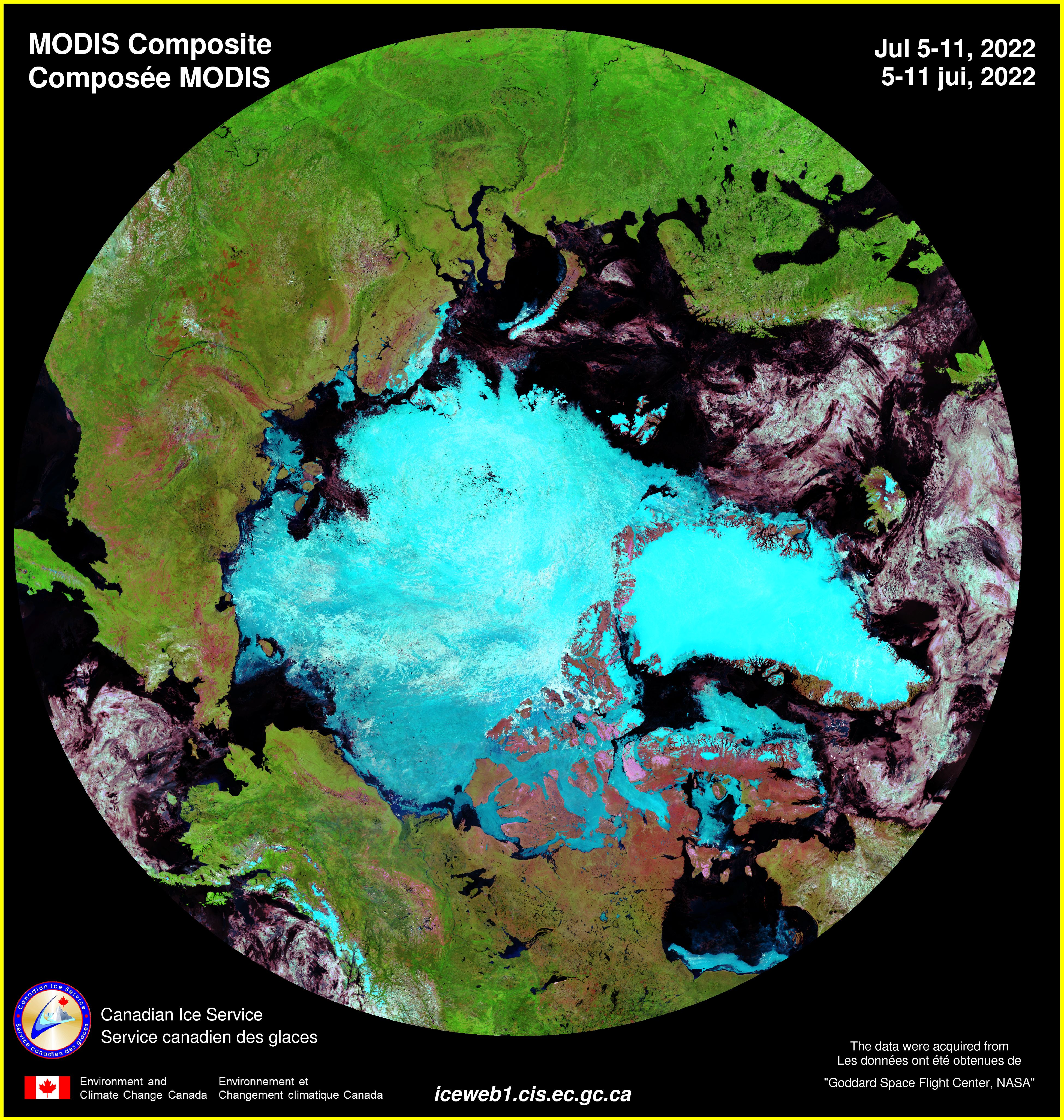 Banquisa Ártico